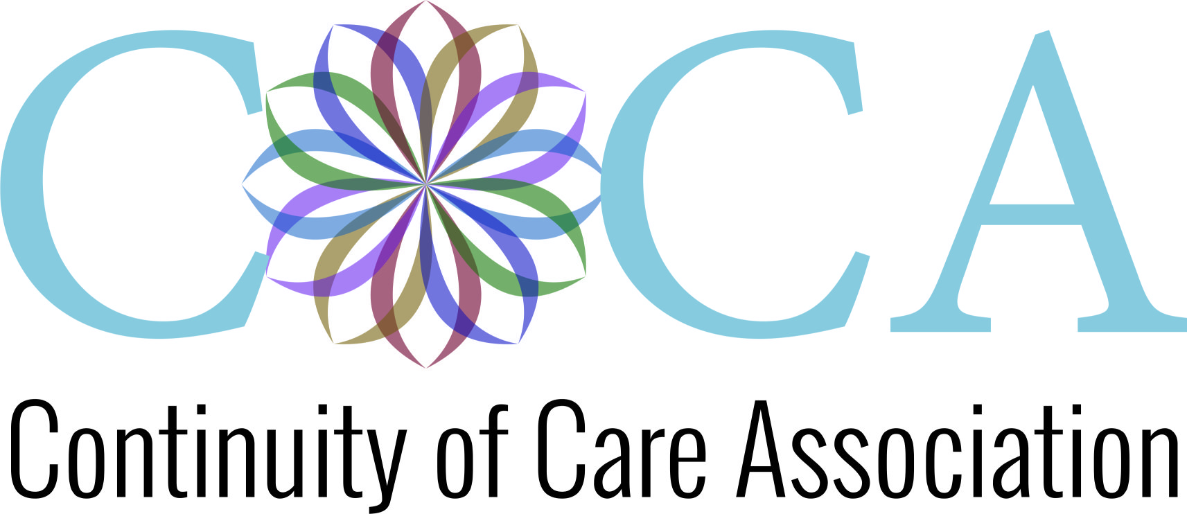 Continuity of Care Association